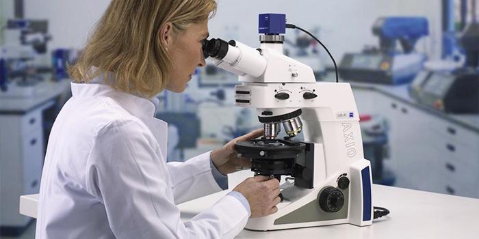 Биохимический анализ кала на дисбактериоз