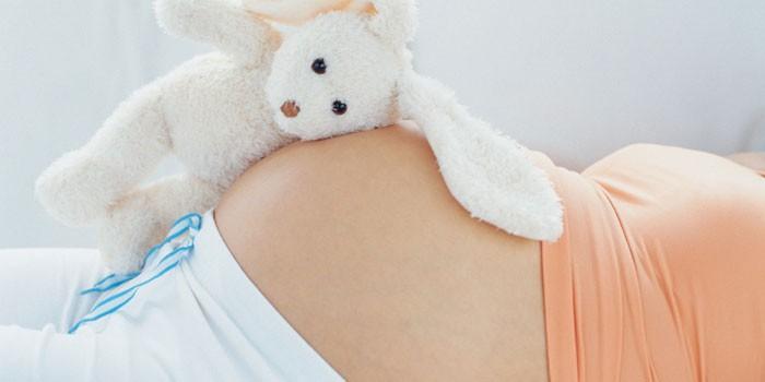 Игрушечный зайчик на животе у беременной девушки