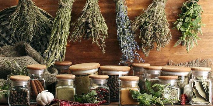 Лекарственные травы и специи