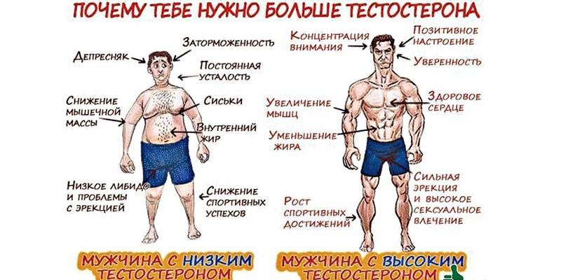 Симптомы дефицита и переизбытка тестостерона у мужчин