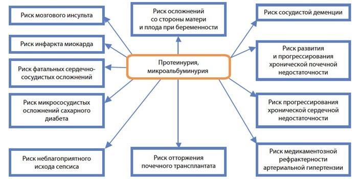 Механизмы развития протеинурии