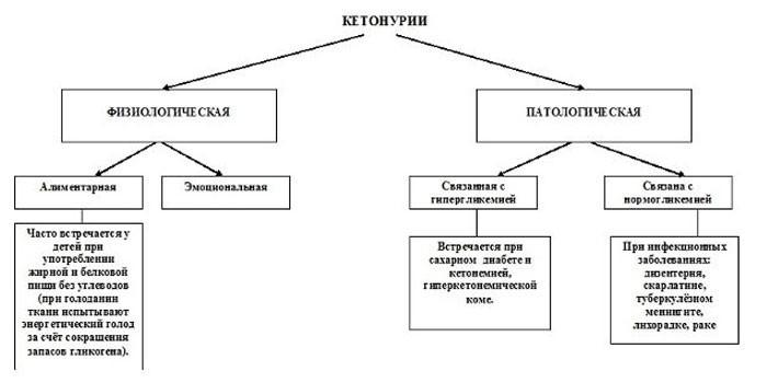 Виды и причины кетонурии