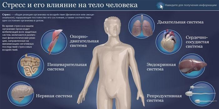 Последствия для организма