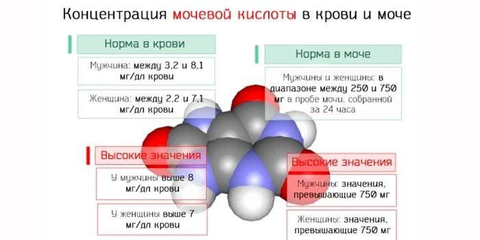 Показатели нормы в моче и крови