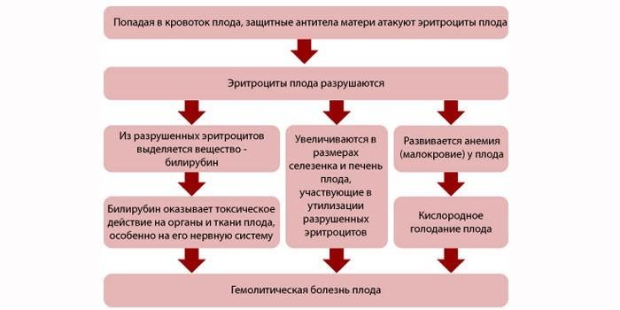 Схема протекания болезни у детей