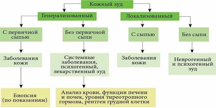 Классификация кожного зуда