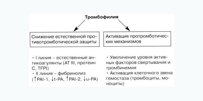 Определение тромбофилии