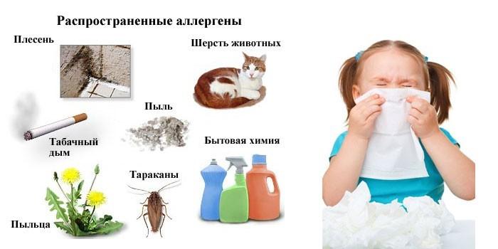 Самые распространенные аллергены