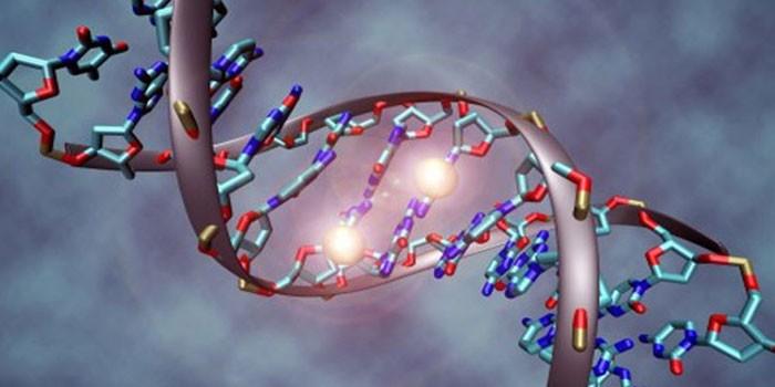Мутация генов