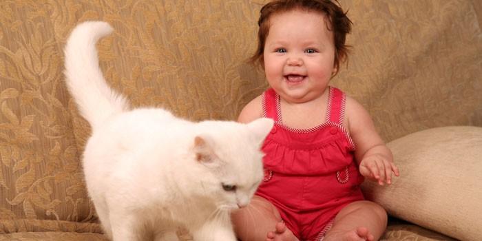 Маленькая девочка и кошка