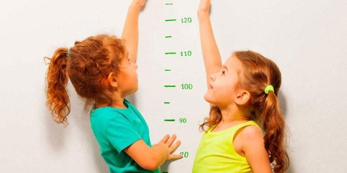 Две девочки у мерной шкалы роста