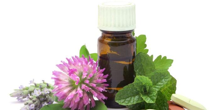 Эфирное масло и растения