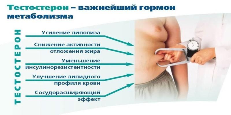 Индекс свободного тестостерона