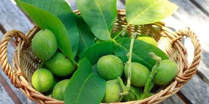 Зеленые грецкие орехи в корзине