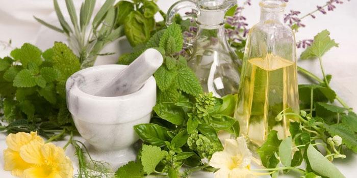 Лекарственные травы и настой