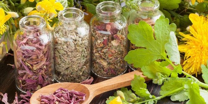 Лекарственные травы в баночках