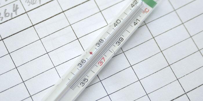 Ртутный градусник и журнал температуры