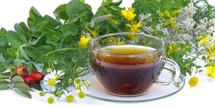 Травяной отвар в чашке