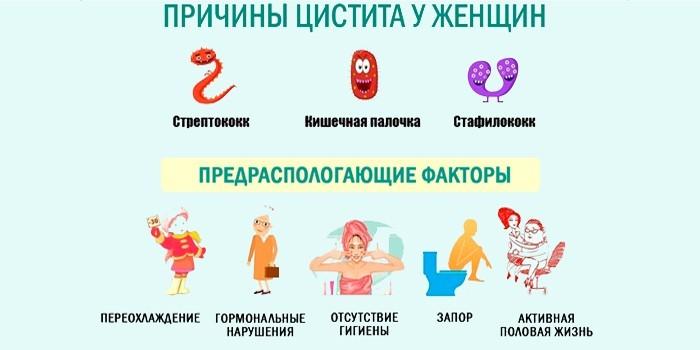 Причины и факторы риска воспаления мочевого пузыря