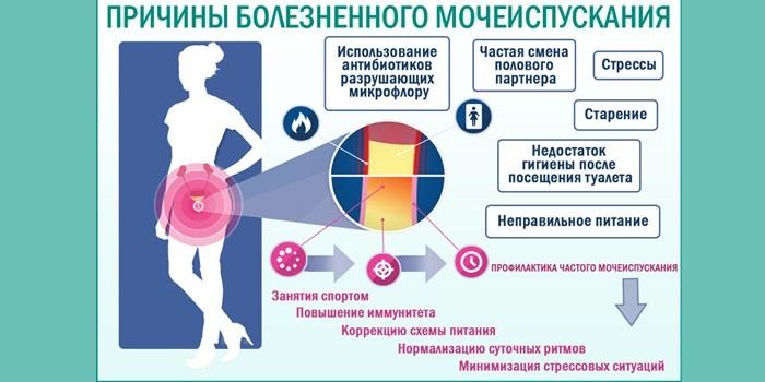 Причины болей при мочеиспускании
