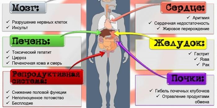 Воздействие алкоголя на организм