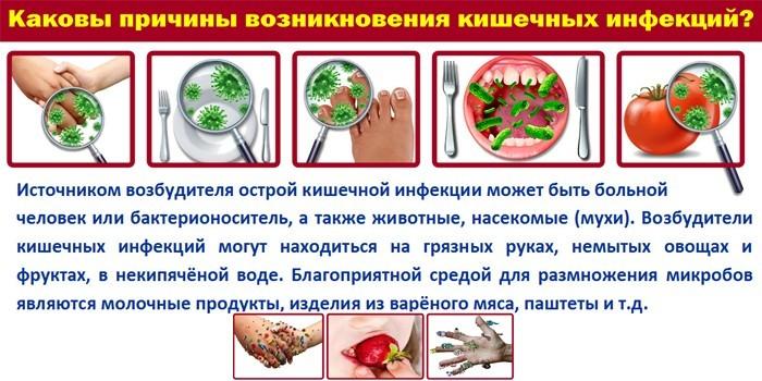 Причины кишечных инфекций