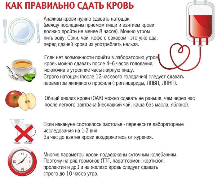 Как правильно сдать кровь