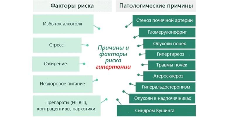 Причины гипертонической болезни