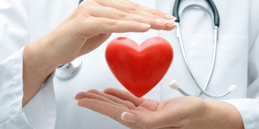 Медик и человеческое сердце