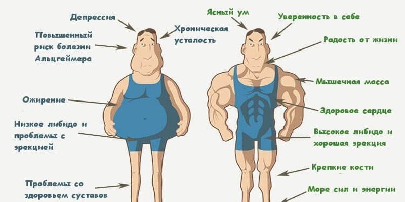 Мужчина с недостатком и нормальным уровнем тестостерона