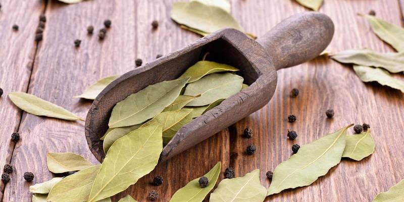 Лавровый лист и перец горошком