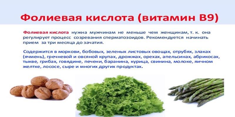Польза и содержание в продуктах питания фолиевой кислоты