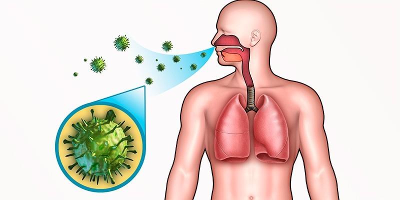 Бактериальное поражение дыхательных путей
