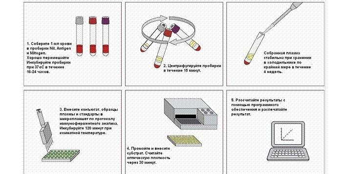 Метод определения возбудителя туберкулеза