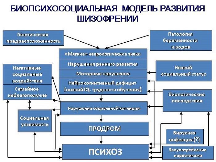 Биопсихосоциальная модель развития шизофрении