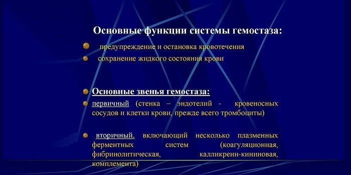 Функции системы гемостаза
