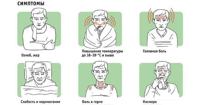 Признаки энтеровирусной инфекции у взрослого