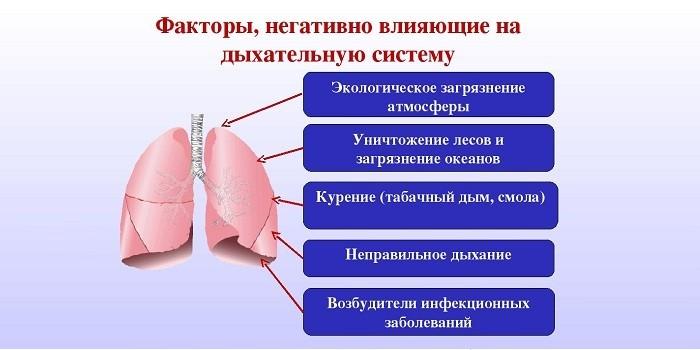 Факторы, негативно влияющие на дыхательную систему