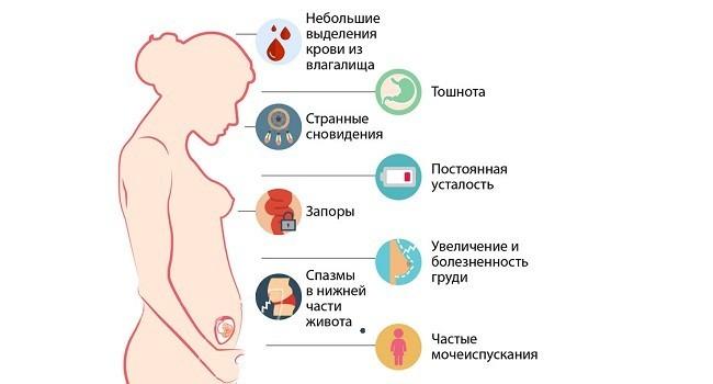 Причины болей в голове на ранних сроках беременности