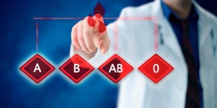 4 группы крови