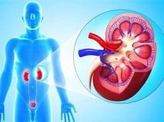 Антибиотики при пиелонефрите для мужчин или женщин — схема приема и дозировка