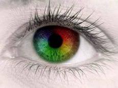 Дальтонизм — как видит мир больной и как определить цветовую слепоту у ребенка или взрослого