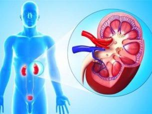 Диагностика гломерулонефрита - виды и порядок проведения исследований