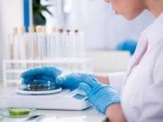 Дрожжевые грибы в кале у взрослого при анализе