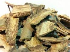 Кора осины — лечебные свойства, как использовать в народной медицине