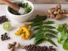 Народные средства от простатита и аденомы простаты — методы на основе трав или продуктов пчеловодства