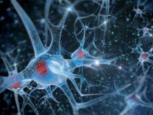 Причины бокового амиотрофического склероза - симптомы и проявления