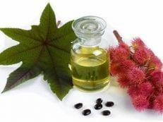 Свойства касторового масла для лечения болезней, в косметологии и для похудения