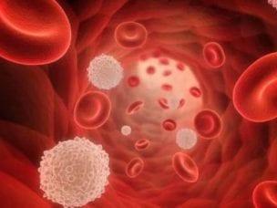 Тромбоцитопения - причины возникновения, симптомы и диагностика