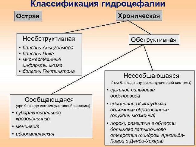 Классификация гидроцефалии